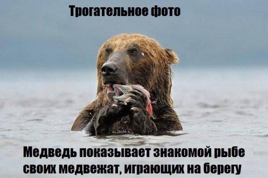smeshnie_kartinki_1365196070060420131439