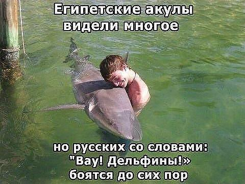 smeshnie_kartinki_1366048328150420132295