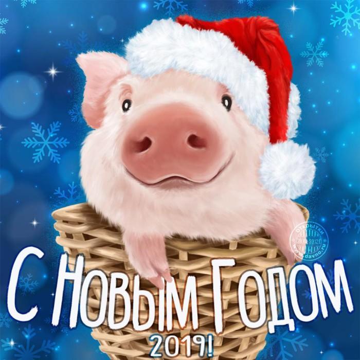 kartinki-pozdravleniya-s-novyim-godom-2019-22.jpg